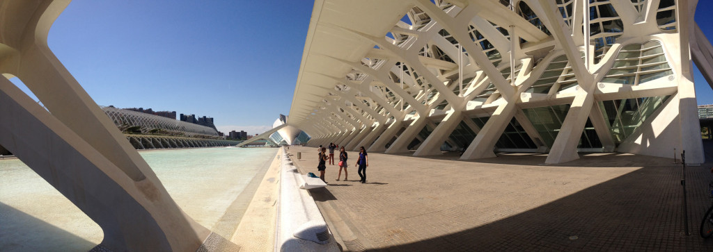 Next to the Valencia City of Arts and Sciences